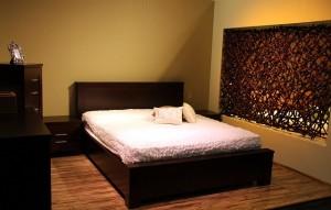 Bettwanzen - Alles zum Thema Bettwanzen, die Bekämpfung von Wanzen und das Auftreten von Bettwanzen.