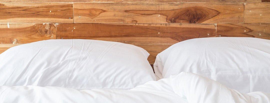 Was tun bei Bettwanzen im Seniorenheim?